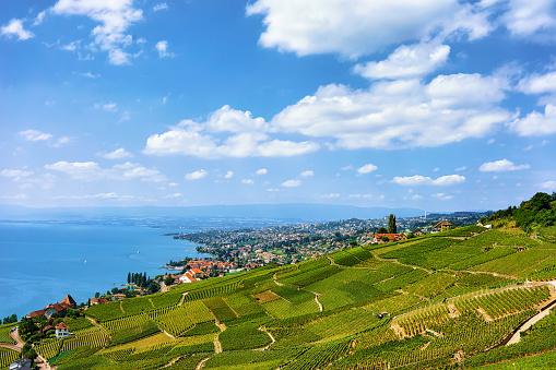 Swiss chalets near Lavaux Vineyard Terraces hiking trail Switzerland