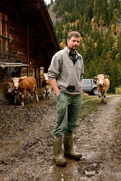 Schweizer Farmer steht auf der Farm mit Kühe auf die Berge – Foto