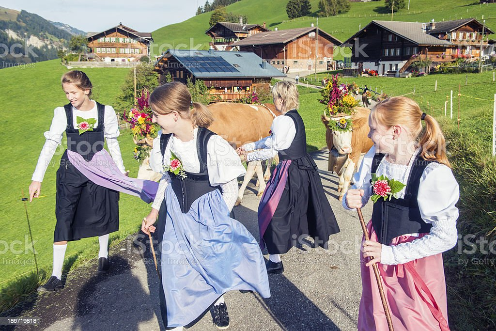 Swiss Females Lead Cattle Down the Mountain royalty-free stock photo