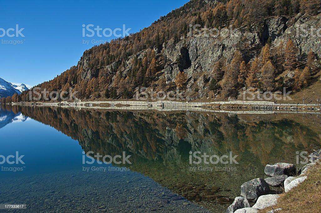 Swiss Lake Silvaplana royalty-free stock photo
