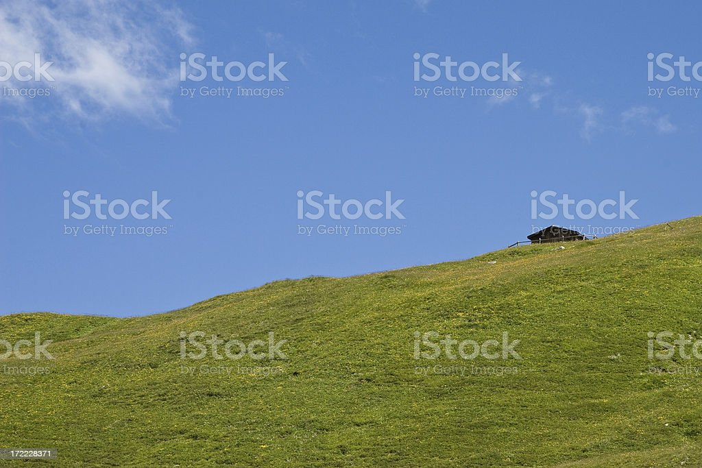 Swiss mountain meadow royalty-free stock photo