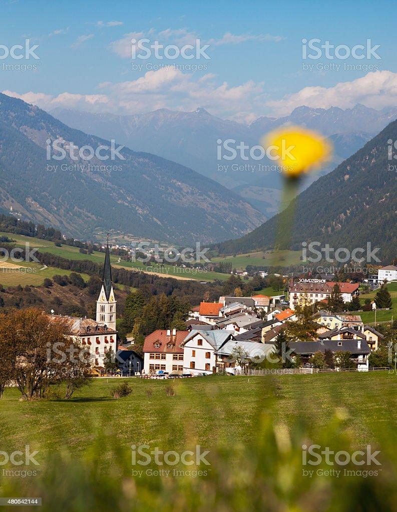 Swiss mountain village, valley, flower, Val Müstair, Graubünden, Switzerland stock photo
