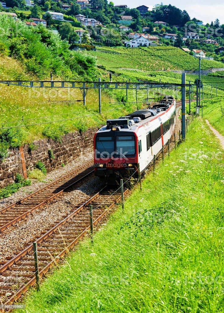 Swiss running train at Vineyard Terrace of Lavaux in Switzerland stock photo