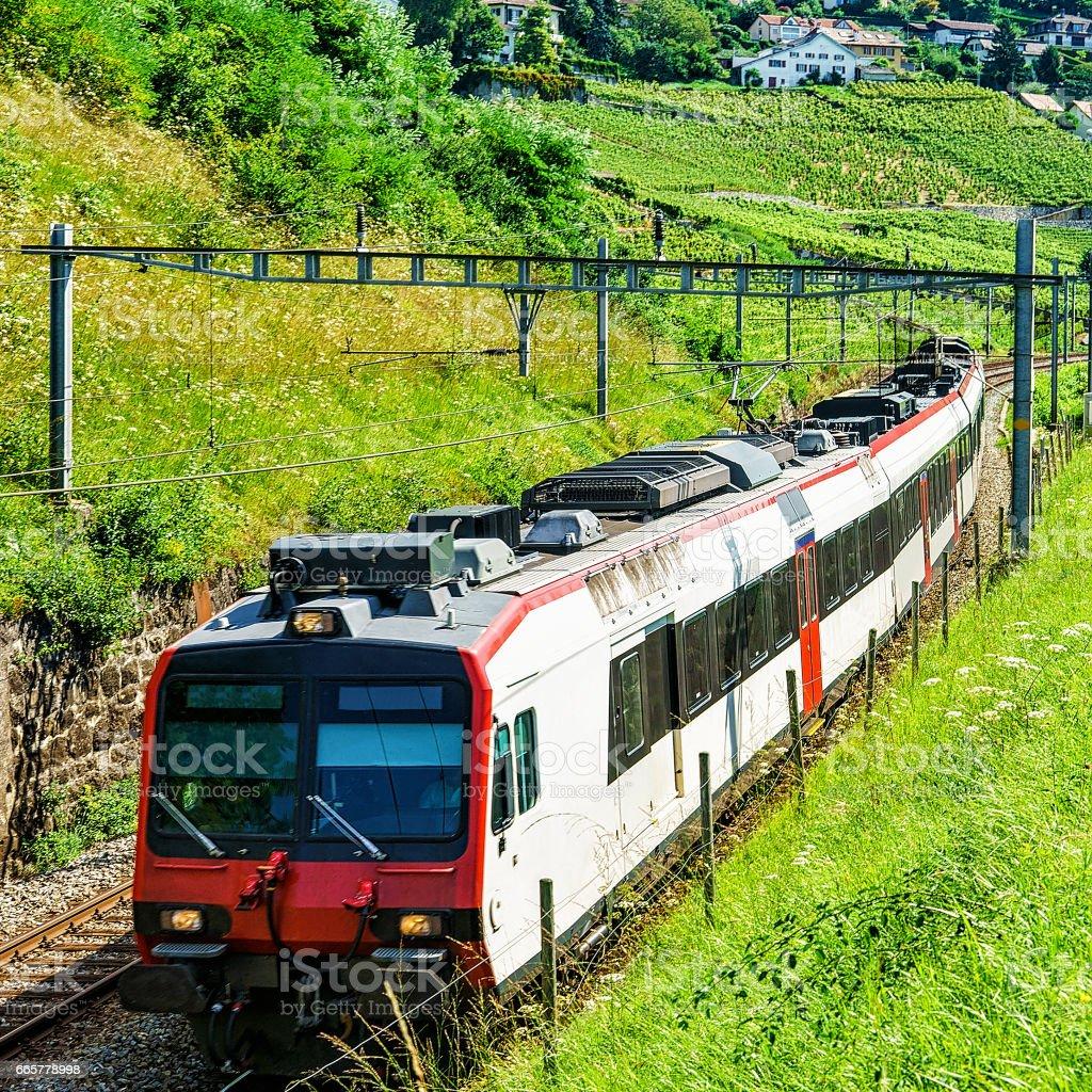 Swiss running train at Vineyard Terraces of Lavaux Switzerland stock photo