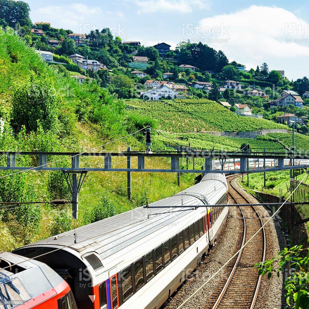 Swiss running train in Vineyard Terrace of Lavaux in Switzerland stock photo