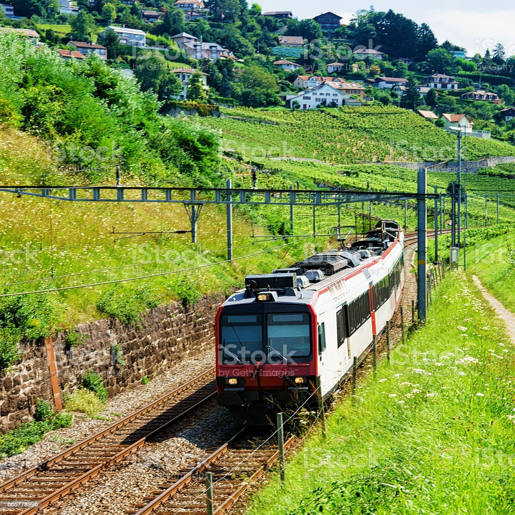 Swiss running train in Vineyard Terraces of Lavaux in Switzerland stock photo