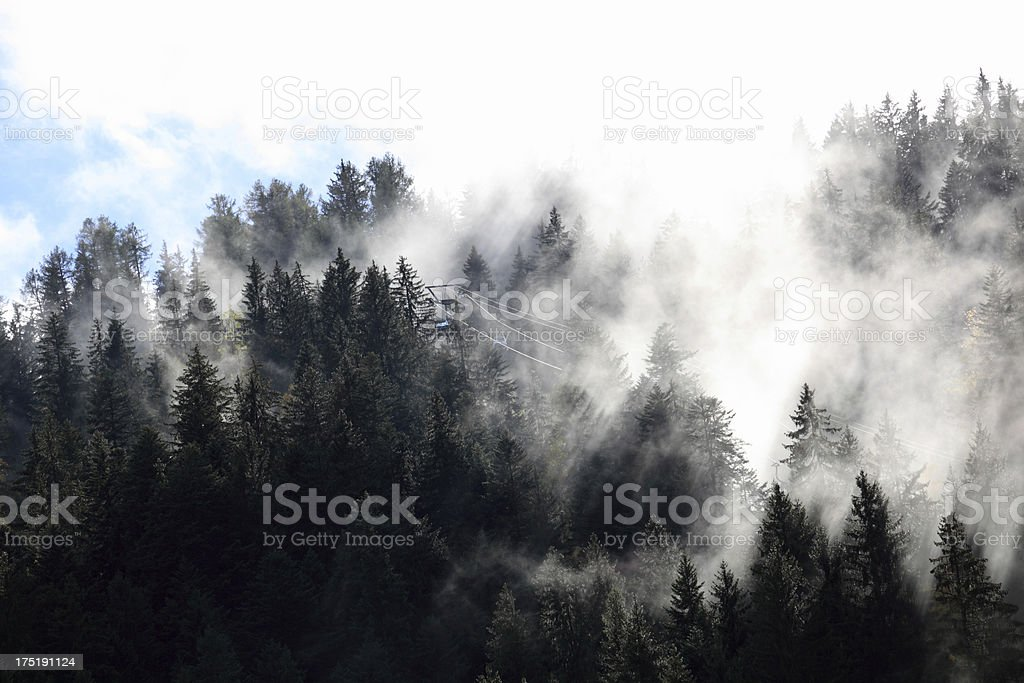 swiss ski lift cable car over pines in mist royalty-free stock photo