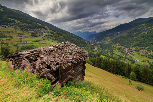 Swiss summer alps meadow with shed