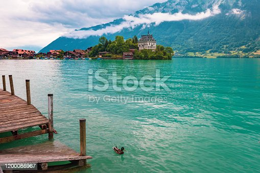 View of village and former castle on Lake Brienz in swiss village Iseltwald, Switzerland. Duck in the foreground