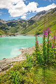 The barrage de Cleuson in the Valais region of the Swiss alps filled with beautiful blue/green water from glacial melt.