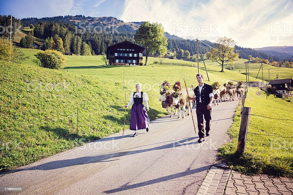 Switzerland: Leading the cows to annual County Fair royalty-free stock photo
