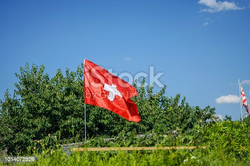istock switzerland national flag in garden with blue sky 1014072526