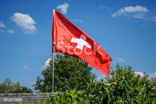 istock switzerland national flag in garden with blue sky 1014072578