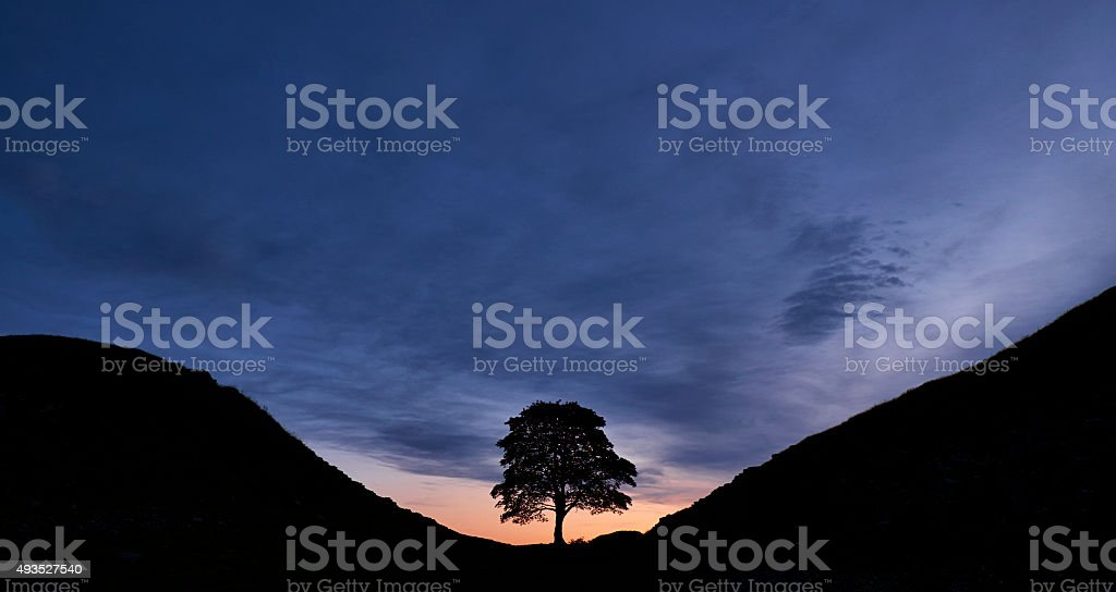 Sycamore Gap And Hadrian's Wall At Dawn stock photo