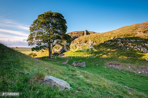 istock Sycamore Gap on Hadrian's Wall 811489930