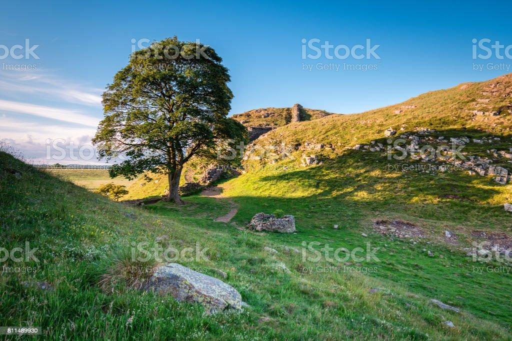 Sycamore Gap on Hadrian's Wall stock photo