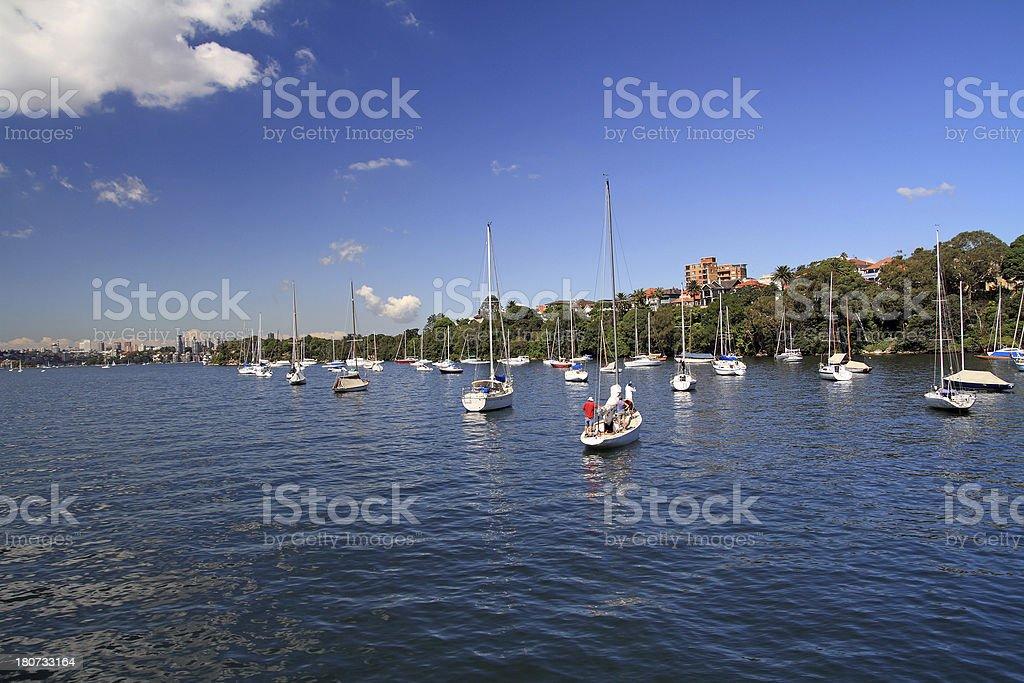 Sydney Bay stock photo