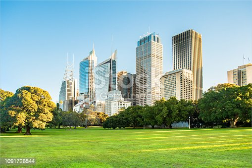 Sydney city high rise buildings and botanic gardens.