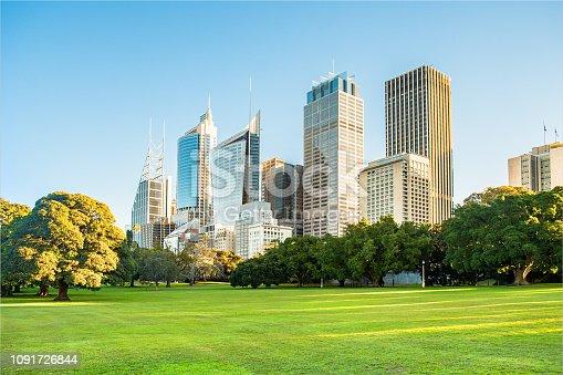 Sydney city high rise buildings and botanic gardens.
