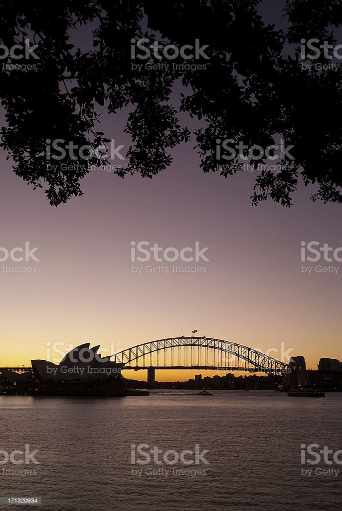 Sydney from Mrs Macquaries Point (Night) royalty-free stock photo