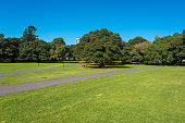 istock Sydney public Domain grounds with green grass and pedestrian path at sunny day 1209985666