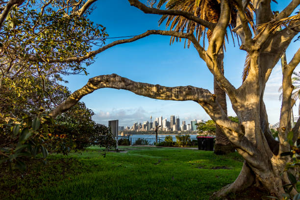 Sydney Skyline an einem bewölkten Tag im Sommer. – Foto