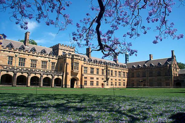 Universität von Sydney – Foto