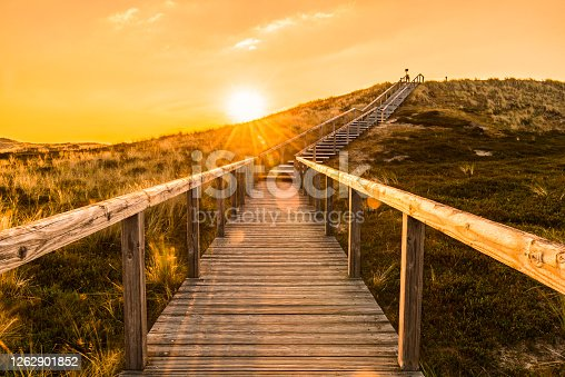 Sylt island sunrise scenery with wooden stairs climbing the sand dune. Wooden deck over the covered in moss dunes. Natural parkland in the North Sea on the german island, Sylt