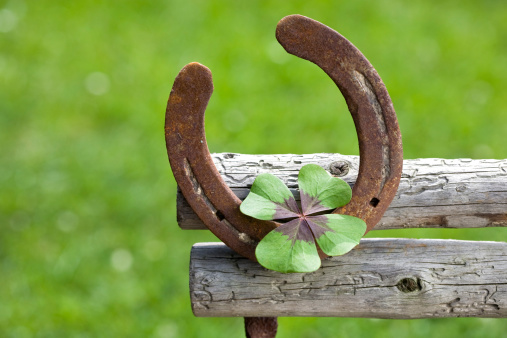 a horseshoe and a four-leaf clover symbolizes good wishes