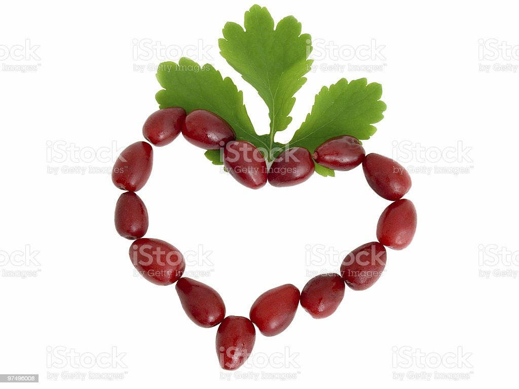 Symbol of heart from red berries royalty-free stock photo