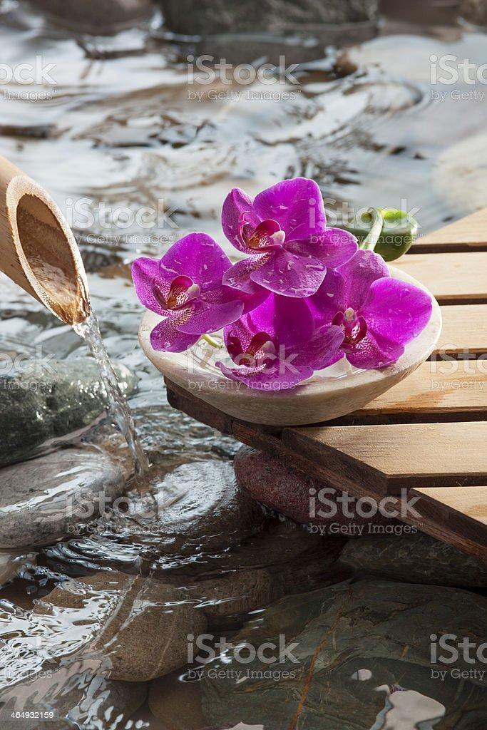 symbol of natural beauty hydration stock photo