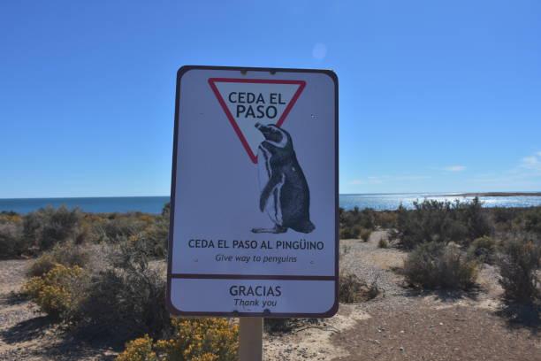 Symbol am Strand von Punta Tombo, Patagonien – Foto