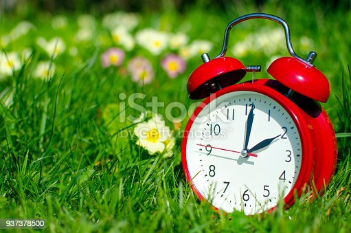 The photo is showing the clock in a floral surrounding.