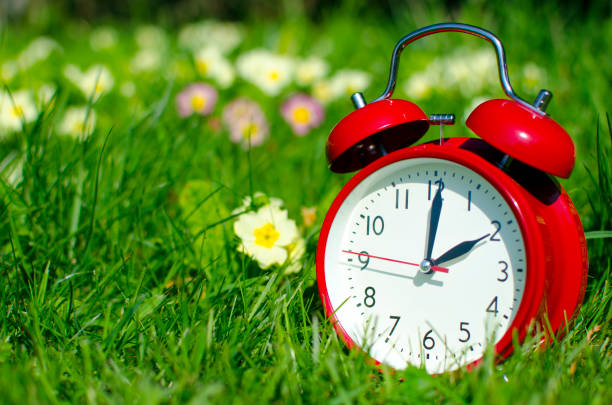 Symbolic alarm clock sitting in a flowerbed for time change to daylight saving time The photo is showing the clock in a floral surrounding. daylight savings stock pictures, royalty-free photos & images