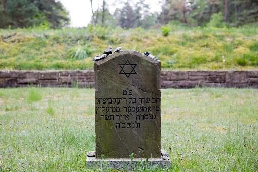 Symbolic Jewish Graven Bergen-Belsen