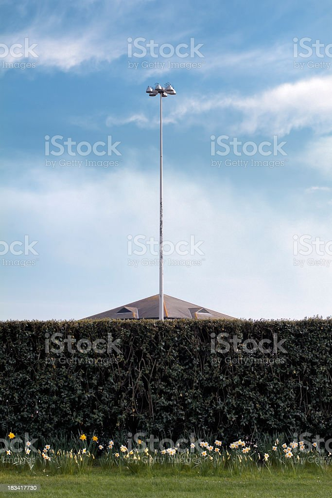Symmetric sky - hedge, streetlamp, blue cloudy skay royalty-free stock photo