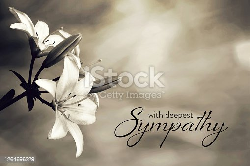 Sympathy card with lily flowers