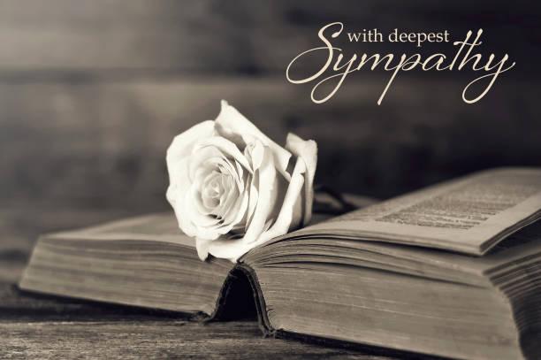Sympathiekarte mit Rose auf offenem Buch – Foto