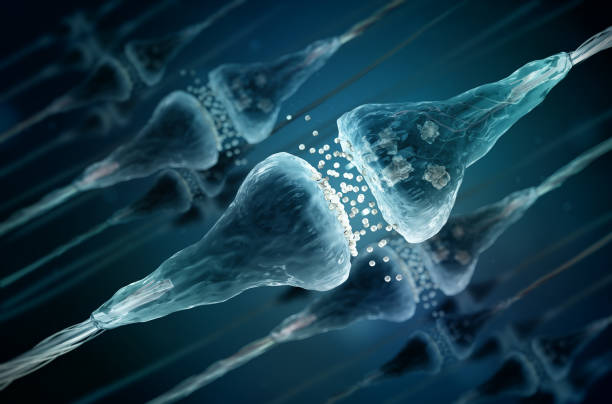 Synapse and Neuron cells sending electrical chemical signals - foto stock