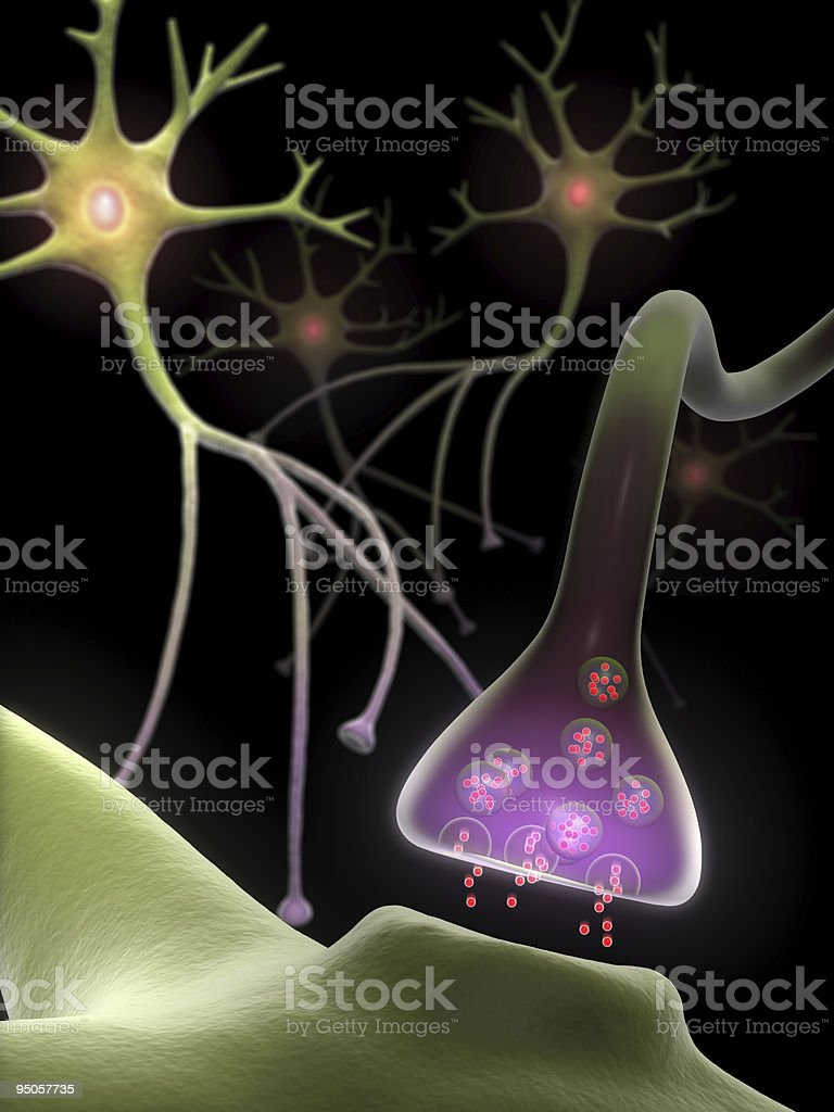 Synapse and Neurons stock photo