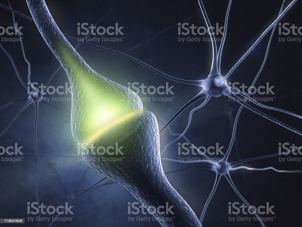 Synapse royalty-free stock photo