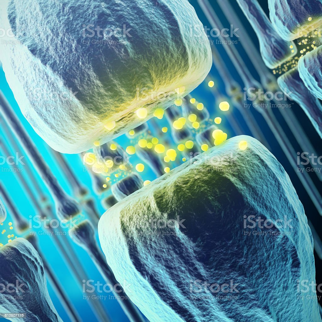 Synaptic transmission, human nervous system. 3d rendering stock photo