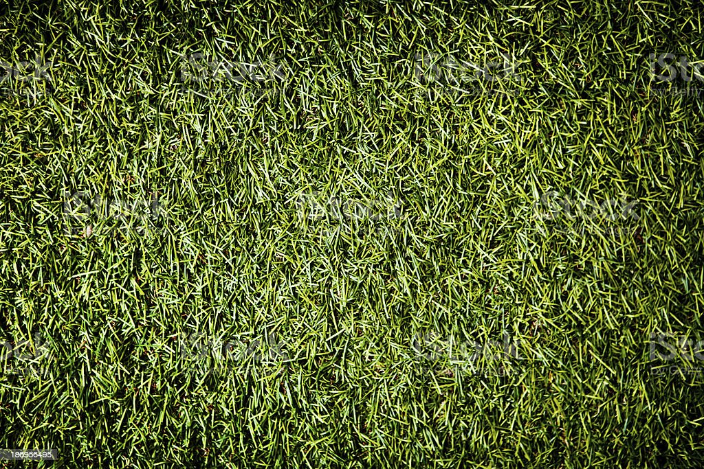 Synthetic green grass background royalty-free stock photo