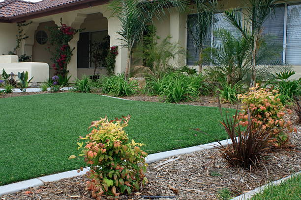 synthetic lawn front yard - imitation stock photos and pictures