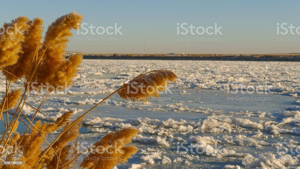 Syrdarya River in December, Baikonur, Kazakhstan stock photo