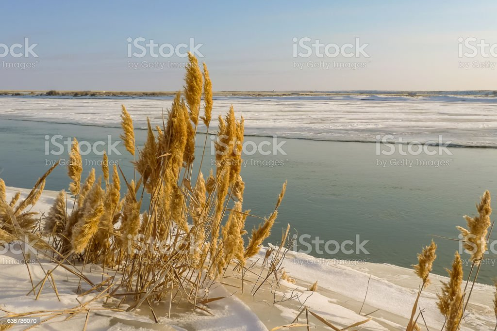 Syrdarya River in January, Baikonur, Kazakhstan stock photo