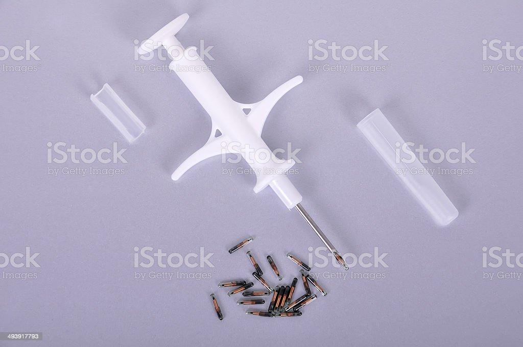 Syringe and animal id stock photo