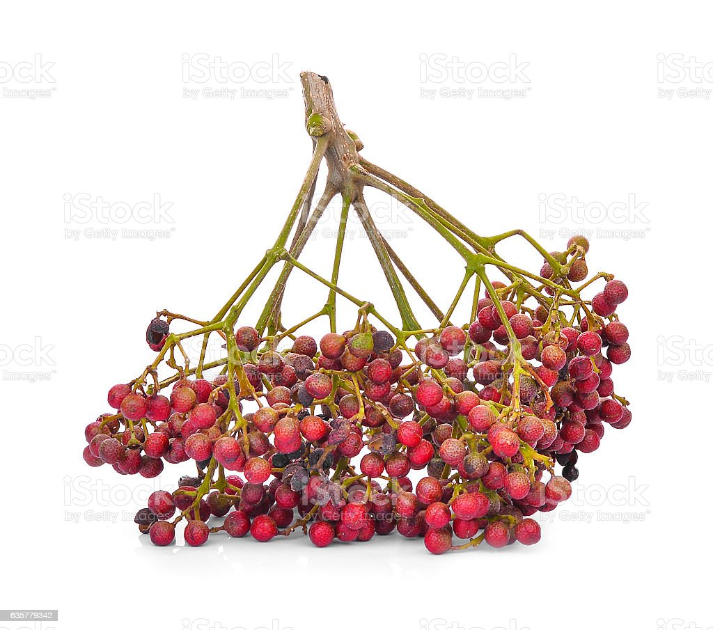 Szechuan pepper (Zanthoxylum piperitum), fruits isolated on whit stock photo