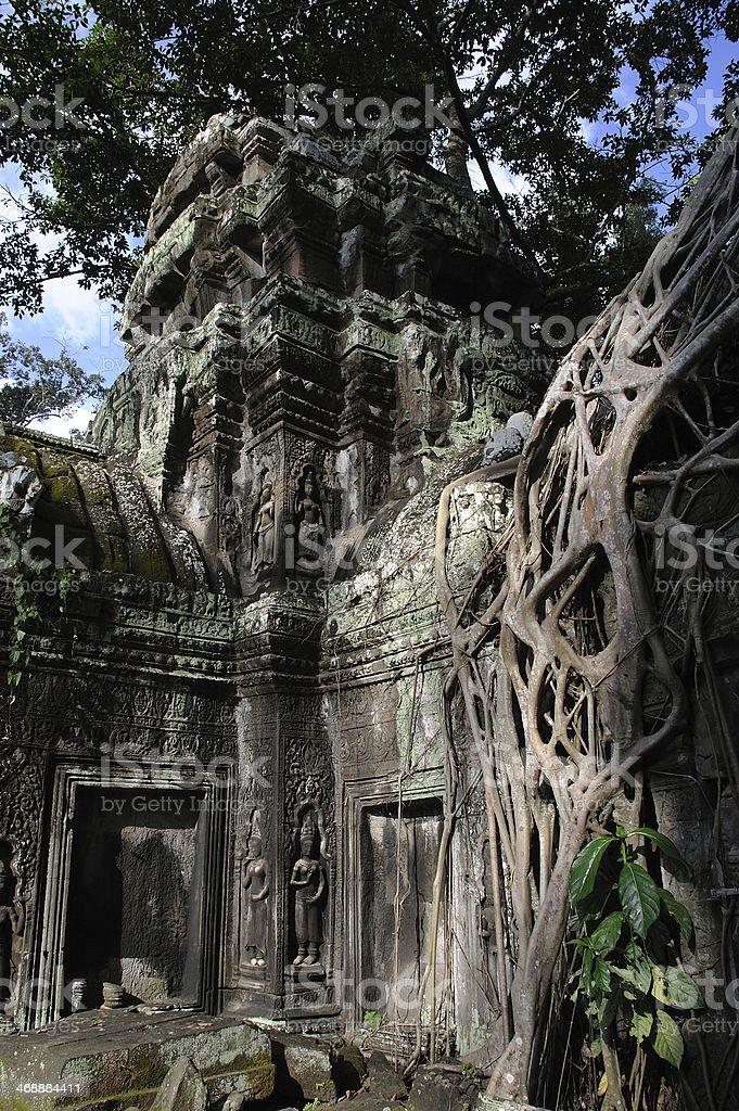 Ta Prohm Jungle Temple stock photo