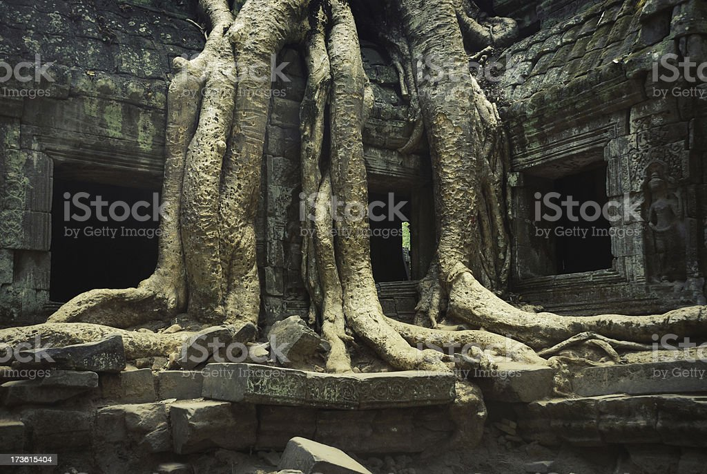 Ta Prohm Temple, Ancient Angkor, Cambodia royalty-free stock photo